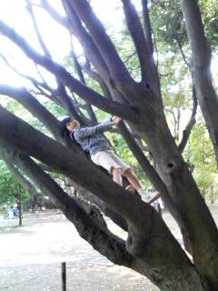 木登り@林試の森