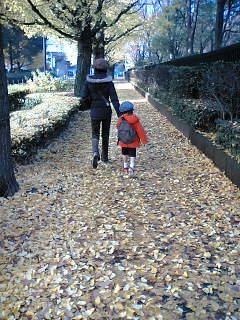 落ち葉の道が